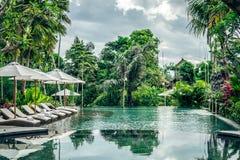 Luksusowy pływacki basen przy willą tropikalna Bali wyspa, Indonezja Fotografia Stock