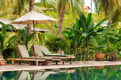 Luksusowy pływacki basen w tropikalnym ogródzie Obraz Stock