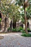 Luksusowy podwórze ogród przy Barcelona katedrą obraz stock