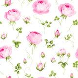 Luksusowy różany wallapaper Obrazy Royalty Free