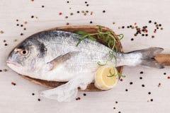 Luksusowy rybi tło. Owoce morza. obraz stock