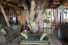 Luksusowy safari hotel w Afryka Zdjęcia Royalty Free