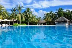 Luksusowy tropikalny pływacki basen Obraz Stock