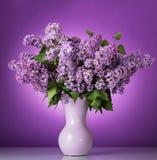 Luksusowy wiosna bukiet w wazie na purpurach fotografia royalty free