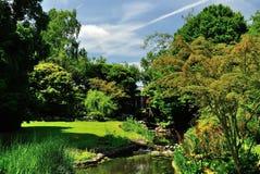 Luksusu Parkowy widok obraz stock