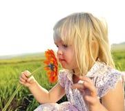 Lukta blommor Royaltyfria Bilder