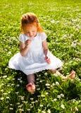Lukta blommor Arkivbild