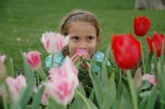 lukta för blommor Arkivfoton
