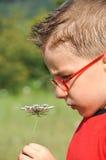 lukta för pojkeblommor Arkivbild