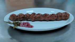 Lula kebab on a plate. Lula kebab with onion and spices on white plate stock footage