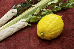 Lulav and Etrog Royalty Free Stock Photography