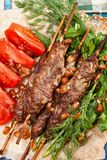 Lule-Kebabnahaufnahme oben lizenzfreie stockbilder