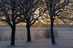 Lule River in winter sun Royalty Free Stock Image