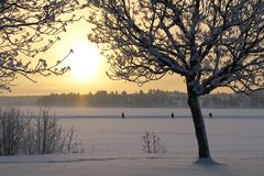 Lule River in winter sun Royalty Free Stock Photos