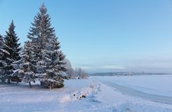 Lule River in winter sun Royalty Free Stock Images