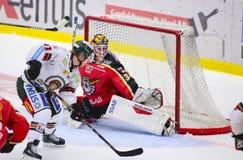 Lulea Sverige - mars 18, 2015 Joel Lassinantti (hockey för #34 Lulea) är klar att göra en räddning Svensk hockeyLiga-lek, mellan  royaltyfri fotografi