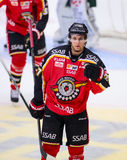 Lulea, Sweden - March 18, 2015. Daniel Zaar (#27 Lulea Hockey) celebrating a goal. Swedish Hockey League-game, between Lulea Hocke Royalty Free Stock Photos