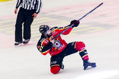 Lulea, Sweden - March 18, 2015. Per Ledin (#97 Lulea Hockey) celebrating his goal! Swedish Hockey League-game, between Lulea Hocke Royalty Free Stock Photos