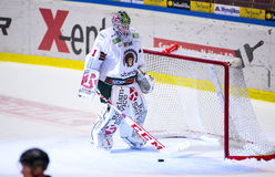 Lulea Szwecja, Marzec, - 18, 2015 Bardzo rozczarowany Lars Johansson podczas Szwedzkiej Hokejowej gry, był (-1 Frolunda indianie) Zdjęcie Royalty Free