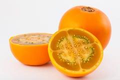 Lulo Solanum quitoense. On white background royalty free stock images
