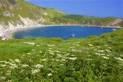 Lulworth Cove - Beautiful beaches of Dorset, UK. Lulworth Cove and beaches of Jurassic coast in England royalty free stock image