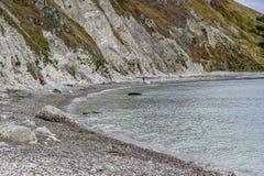 Lulworth liten vik, Dorset, England royaltyfria bilder