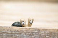 Lumaca che guarda a voi Fotografia Stock