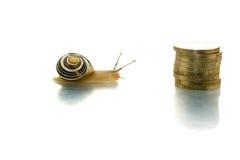 Lumaca che si dirige alle monete Immagini Stock