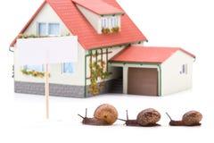 Lumaca di giardino e casa miniatura Immagini Stock Libere da Diritti