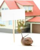 Lumaca di giardino e casa miniatura Immagini Stock