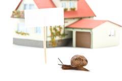 Lumaca di giardino e casa miniatura Immagine Stock