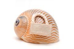 Lumaca di mare con l'etichetta di legno della porta Fotografia Stock Libera da Diritti