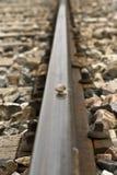 Lumaca sul treno della pista fotografia stock libera da diritti