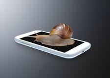 Lumaca sullo smartphone Fotografia Stock Libera da Diritti