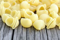 Lumaconi pasta Royalty Free Stock Images