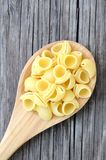 Lumaconi pasta Royalty Free Stock Photography