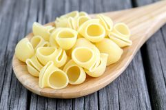 Lumaconi pasta Royalty Free Stock Photos