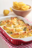 Lumaconi under bechamel sauce Royalty Free Stock Image