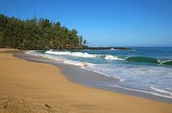 Lumahai strand Royaltyfria Foton