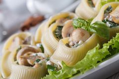 Lumakoni Italian pasta with mushrooms, cheese on a white dish Royalty Free Stock Photos