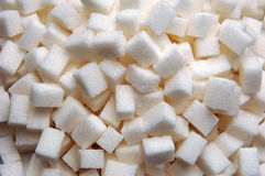 Lumb sugar Royalty Free Stock Photos