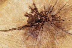 lumber imagem de stock royalty free