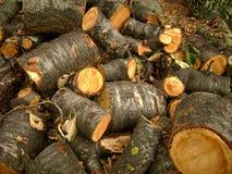 Lumber Royalty Free Stock Photo