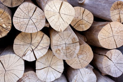 Lumber. The Lumber lay on show Circle of Annual Ring Stock Photography