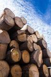 lumber Photographie stock libre de droits