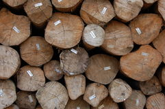 Lumber. A big pile of wood ready to be sell stock photos