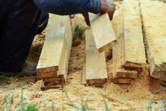 lumber Foto de Stock Royalty Free