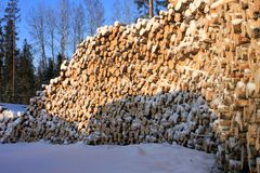 Lumber-camp Stock Photo