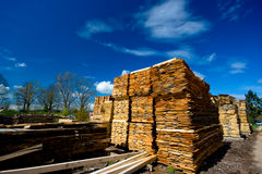 Lumber collection Stock Images