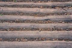 Lumber with dead soil cover Royalty Free Stock Photography